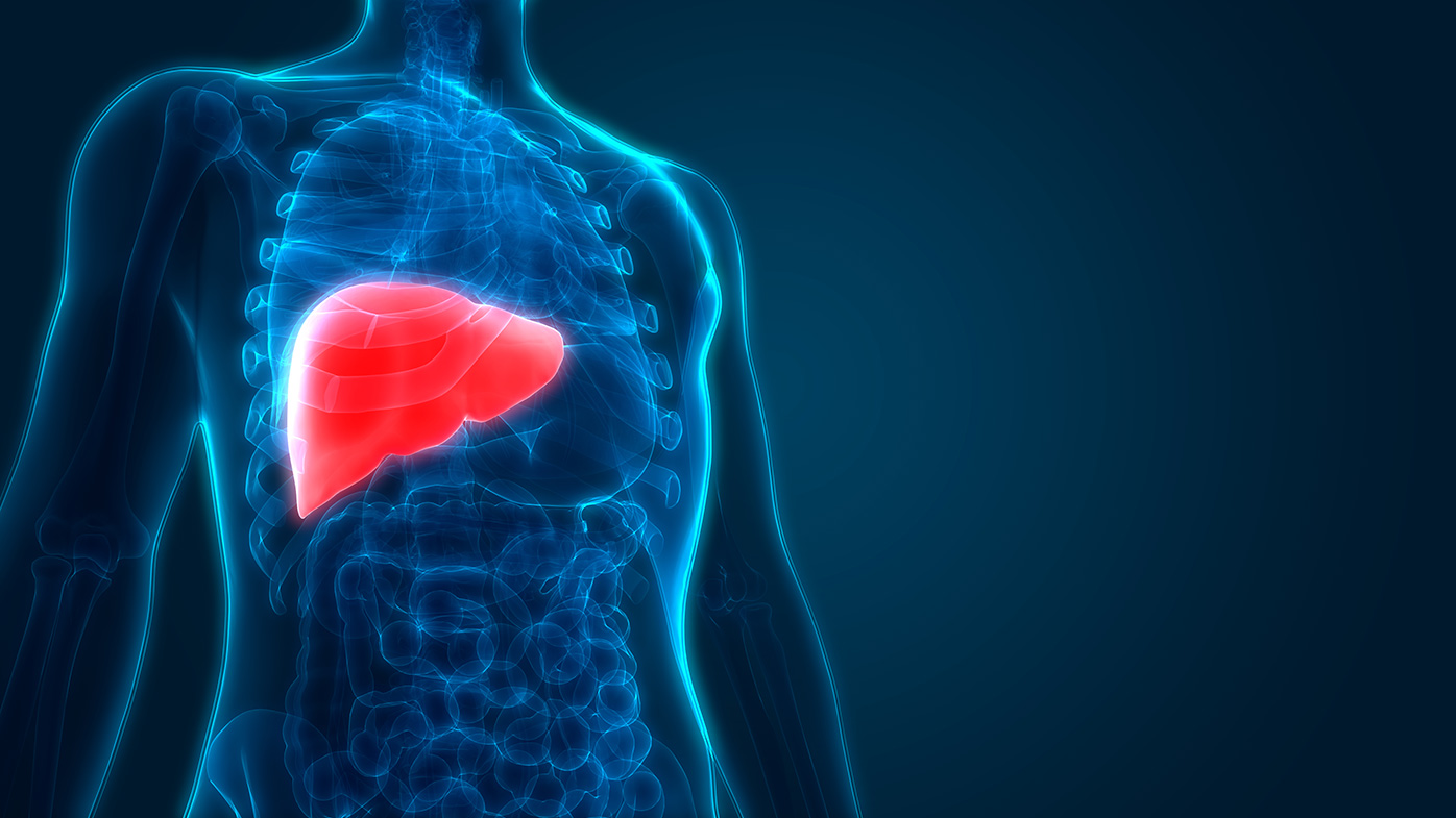 Working Together to Advance Research in Liver Disease