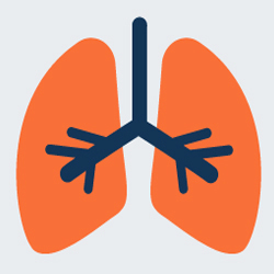 Better Understand Your Risk for Lung Cancer