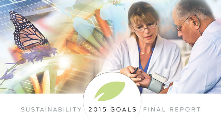 Sustainability 2015 Goals Final Report