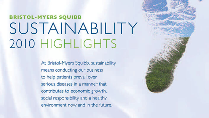 Sustainability 2010 Highlights